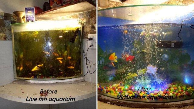 जिन्दा मछली और कृत्रिम मछलियों के एक्वेरियम की तुलनात्मक फोटो