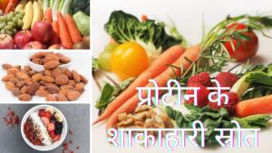 क्या हैं प्रोटीन के शाकाहारी स्रोत? What are the vegetarian sources of protein in Hindi?